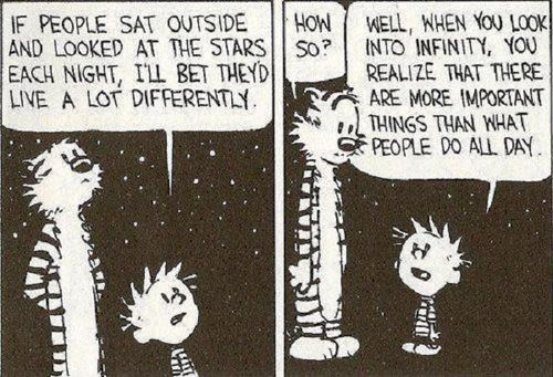 Calvin and Hobbes Comic Infinity